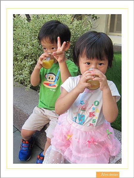 嘉紛娜果之肌鹼性蔬果機能水、果之肌全果汁-04.jpg