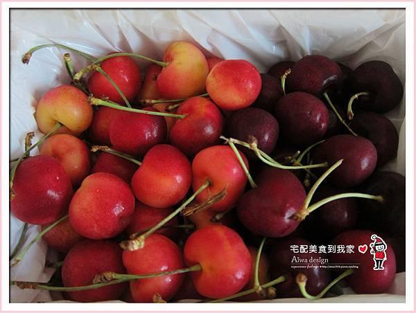果夏GrowShop!華盛頓空運紅白櫻桃,口感好細緻,甜到心坎裡-14.jpg