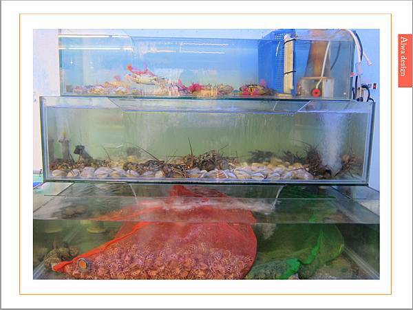 新竹最狂烤鮮蚵《第一夯海鮮燒物》一盤只要一百元!新竹海鮮燒烤推薦-06.jpg