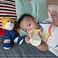 《思耐得:補體素幼兒羊奶粉》給孩子溫和補給,健康打底-09.jpg