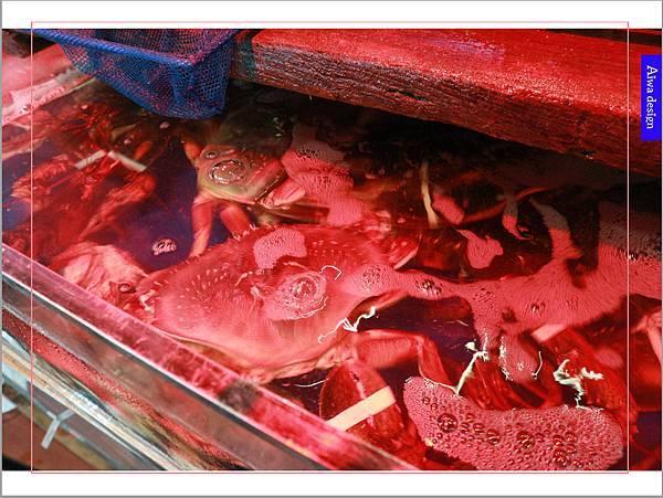 蒸的最健康【海之味新竹北大店-蒸氣養生料理】豪華龍蝦、無油料理, 享受食材最鮮甜的原汁原味-13.jpg