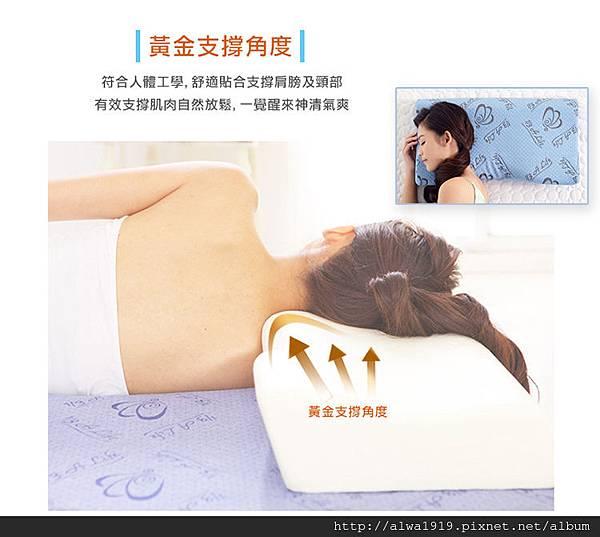 【居家好物】 A Life 睡眠館,枕頭。床墊。乳膠。睡眠好幫手。枕皇+天后,科技涼感側睡記憶枕-33