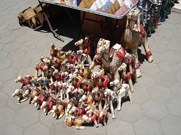 駱駝軍團.JPG