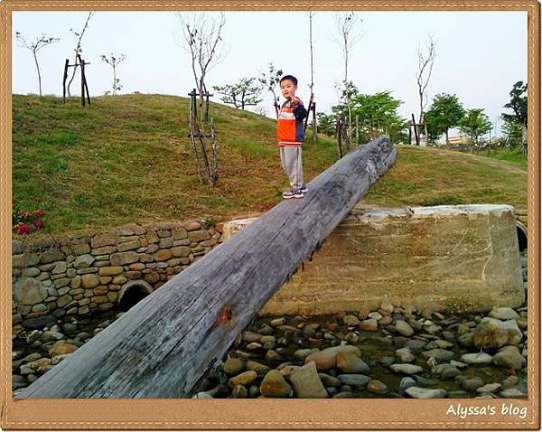 325中都濕地公園09