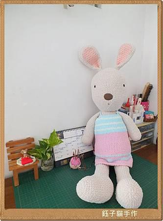 [20140803]法國兔02.JPG