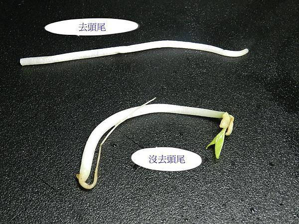 銀芽雞絲豆芽菜圖