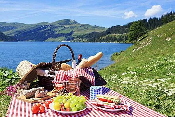 The Best Picnic Baskets on the Market in 2020 _ A Foodal Buying Guide.jpeg
