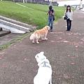 IMG_20141010_151007.jpg