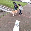 IMG_20141010_150958.jpg