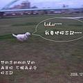 伍佰的浪人情歌p005oj8.jpg