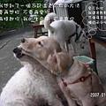 伍佰的浪人情歌p010xo9.jpg