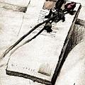 大學時的畫-小說與乾燥的玫瑰