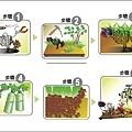 環保燈籠插畫-3