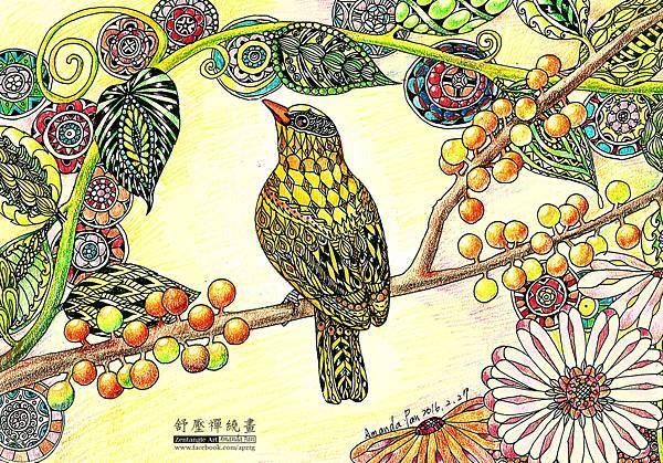 黃鶯.jpg