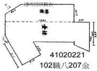 207金-平.jpg