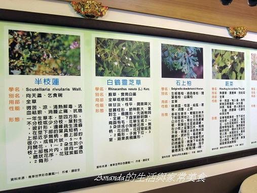 一佳村青草園-青草菜