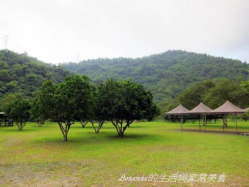 東風有機農場-露營區