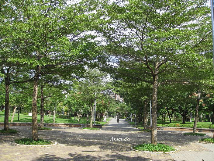 大安森林公園2.JPG