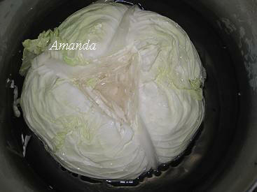 製作酸高麗菜