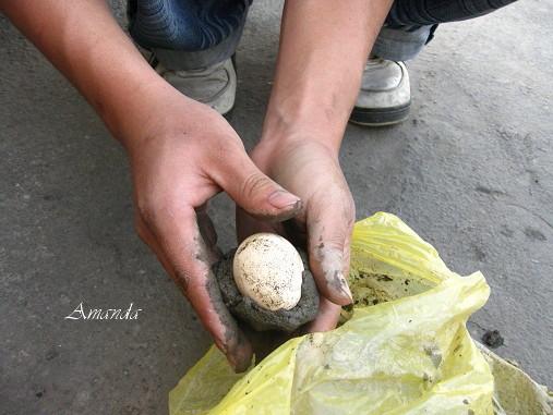 雞蛋裹黏土.jpg