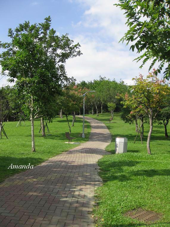 大安森林公園3.JPG