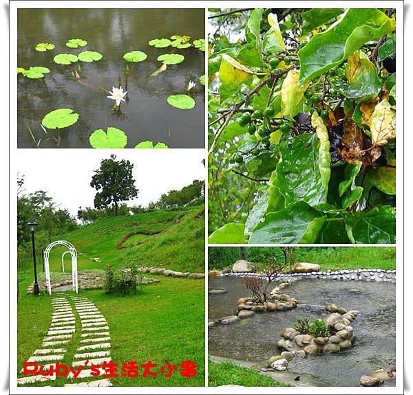 青青湖畔 (3).jpg