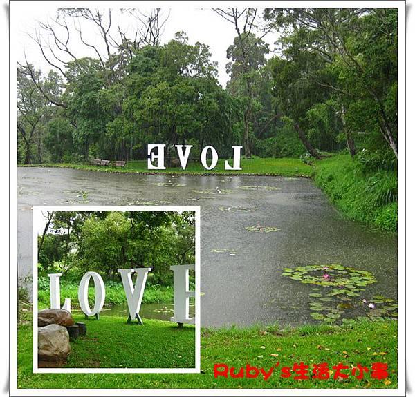 青青湖畔 (27).jpg