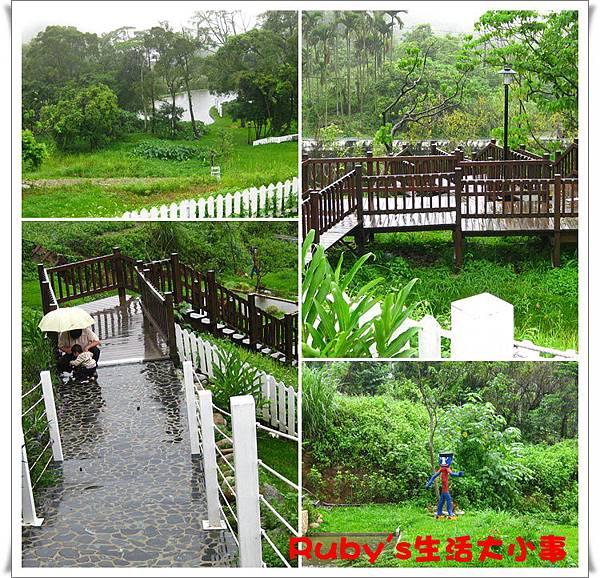 青青湖畔 (2).jpg