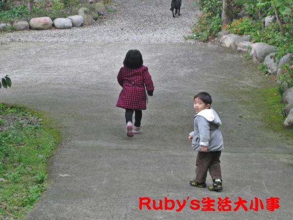 大坑賞猴記 (14).JPG