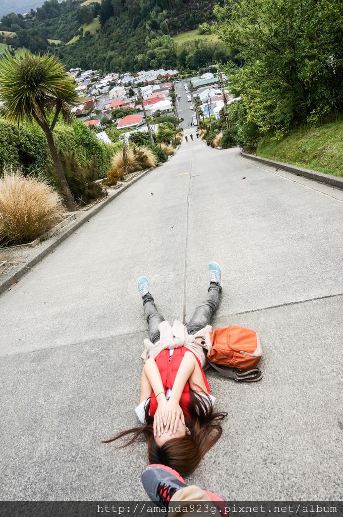 C&H 紐西蘭 雷蒙團 密月 推薦理由 行前準備
