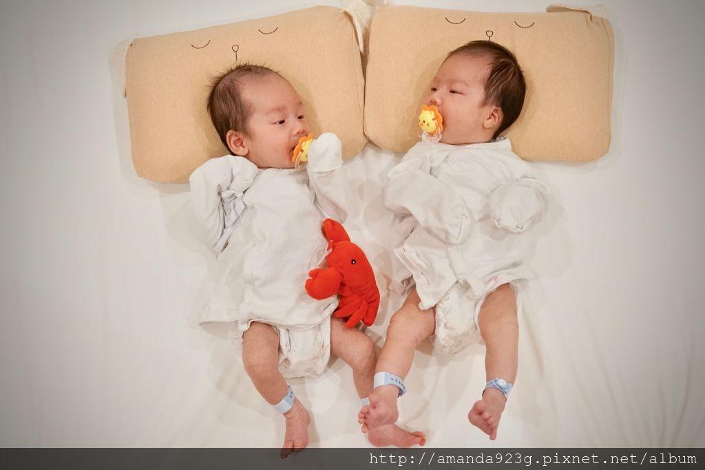 【育兒好物】會呼吸的嬰兒枕頭Cani airwave護頭型小狗枕頭