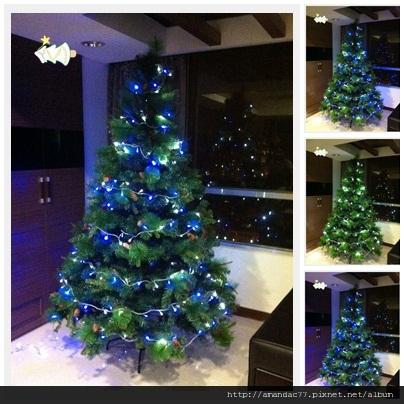 組好發光的聖誕樹.jpg