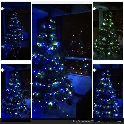 黑暗中發光的聖誕樹.jpg