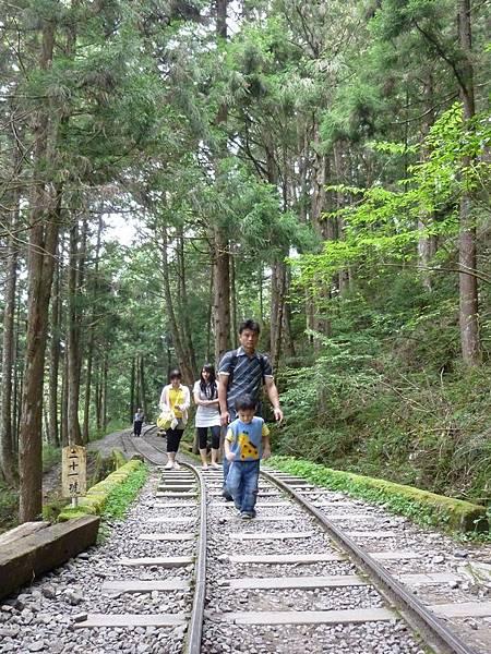 茂興步道5.JPG
