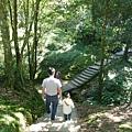 森林知性步道二.JPG