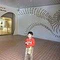 旗津貝殼博物館2.JPG