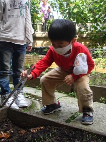 方案活動:替菜園施肥