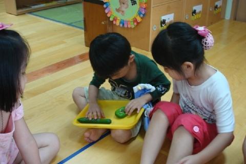 我們的小黃瓜和別班的小黃瓜