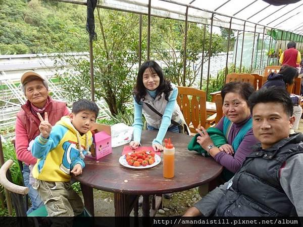 碧山巖草莓