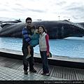 鯨魚親水廣場2