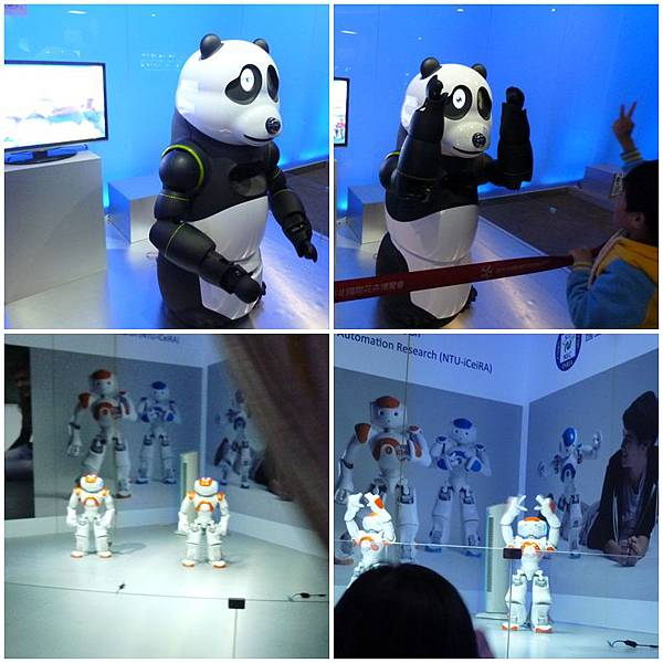 貓熊NAO機器人