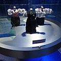 舞蹈機器人2