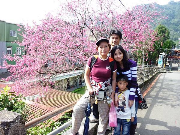 廣濟宮前櫻花