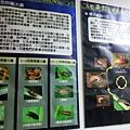 準園螢火蟲解說