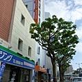 Hotel Rasso Naha Matsuyama.JPG