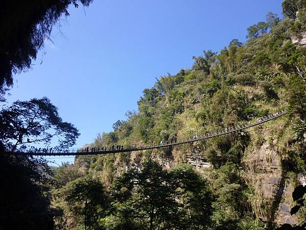 梯子吊橋7.JPG