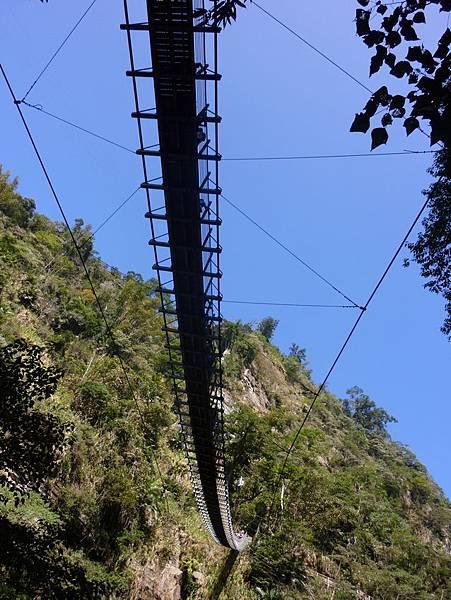 梯子吊橋8.JPG