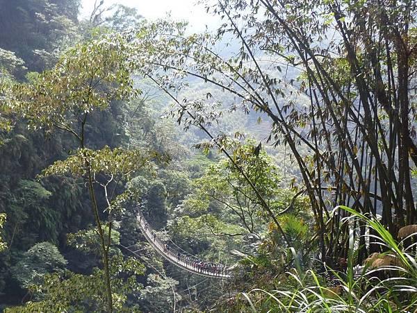 梯子吊橋9.JPG