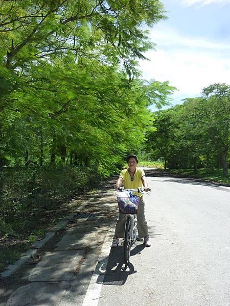 雲山水騎單車 (11).JPG