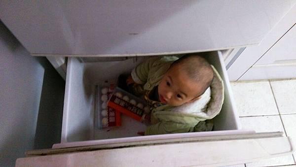 躲冰箱.jpg